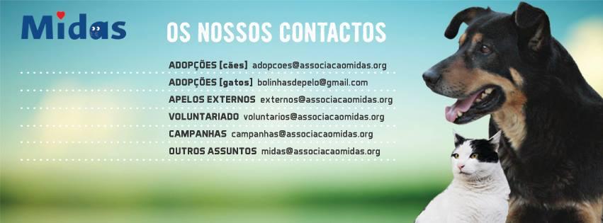 10418402_694650343905522_8888304135514511513_n